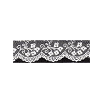 Embroidery on Tulle Lace Trim 25mm Wide - White