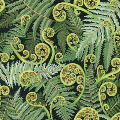 Remnant -Nutex - Extra Wide Fabric - Koru Fronds - Green - 17cm x 270cm
