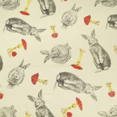 Japanese Import - Rabbit Run With Toadstools