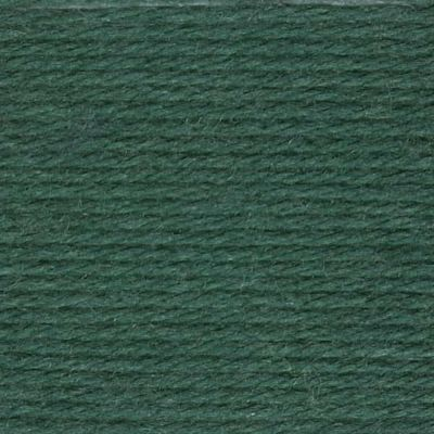 Patons Yarn - Diploma Gold DK 50g Ball - Bottle Green