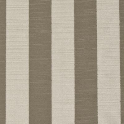 Ascot Stripe - Latte - Curtain Fabric