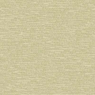 Dashwood Studio - Breeze - Sage