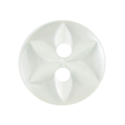 Round Polyester 2 Hole Star Button - Pale Green - 11mm / 18L