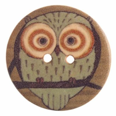 Round Wooden Large Eyed Owl 2 Hole Button 30mm
