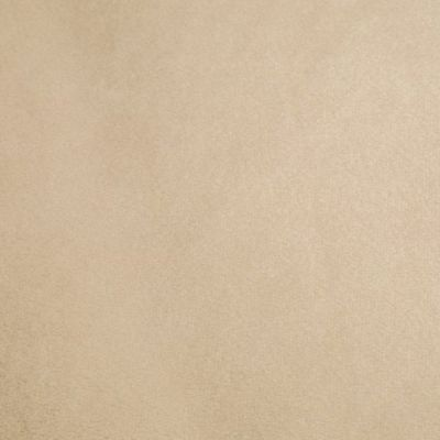 Remnant -Shannon- Smooth Plush Fabric - Latte - 75 x 150cm - Bolt End