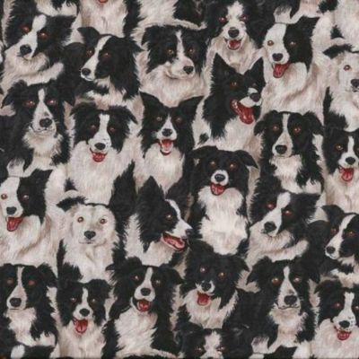 Remnant -  Makower - Farm - Border Collies - 27 x 110cm