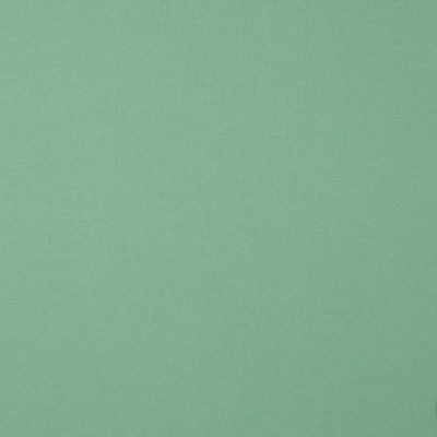 Premium Organic Cotton Jersey - Mint Green