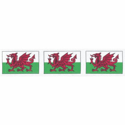Berisfords - Welsh Dragon Ribbon - 25mm Or 35mm Wide