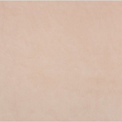 Shannon Smooth Nude Plush Cuddle Fabric