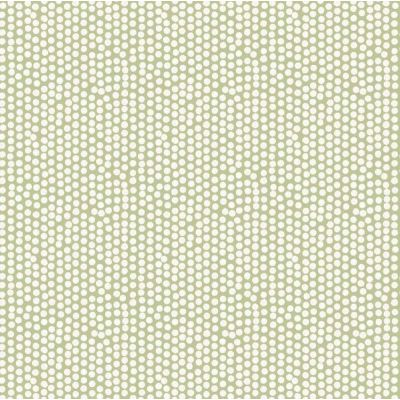 Laminated Cotton - Spotty - Sage