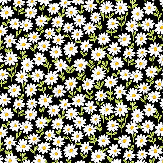 Andover - Sunny Bee - Daisies Black