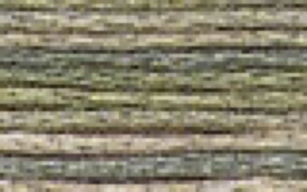 DMC Stranded Colour Variations Thread 4065 For Embroidery & Cross stitch