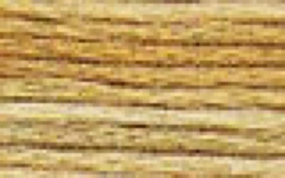 DMC Stranded Colour Variations Thread 4075 For Embroidery & Cross stitch