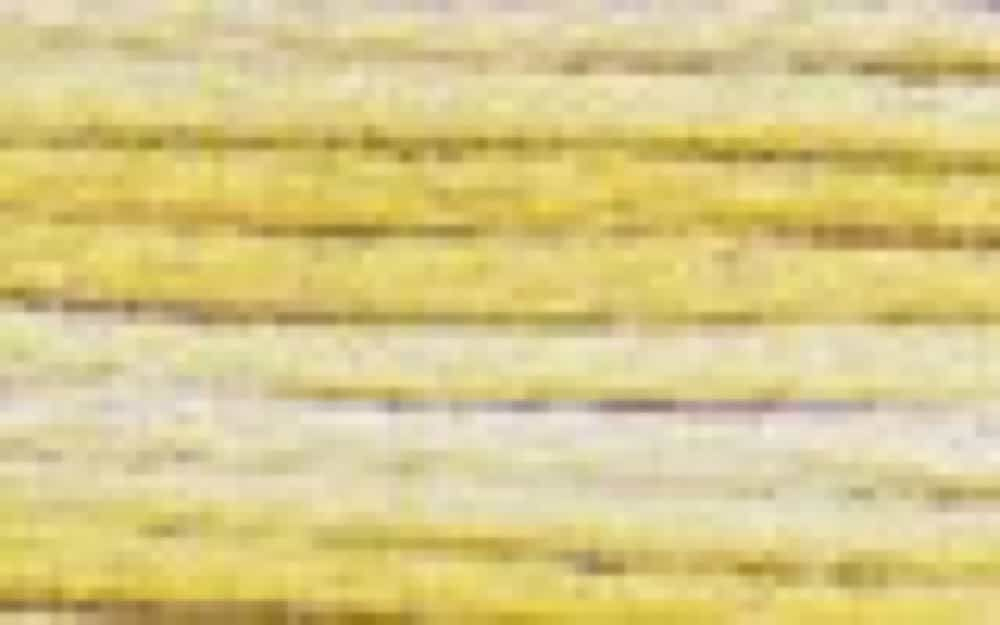 DMC Stranded Colour Variations Thread 4077 For Embroidery & Cross stitch